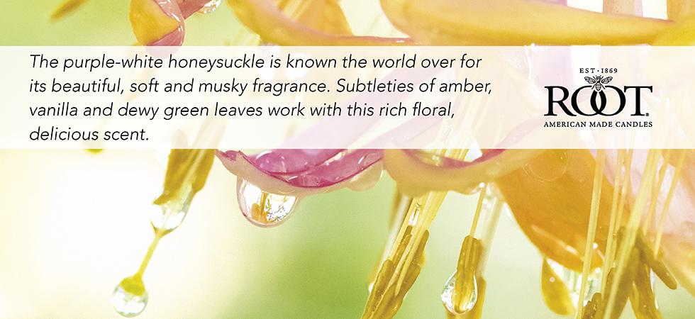 honeysuckle2.jpg