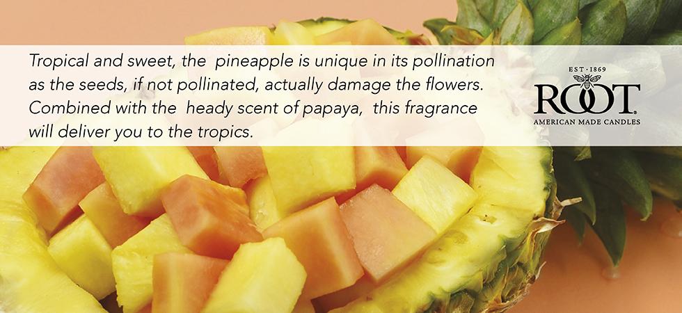pineapple-papaya.jpg