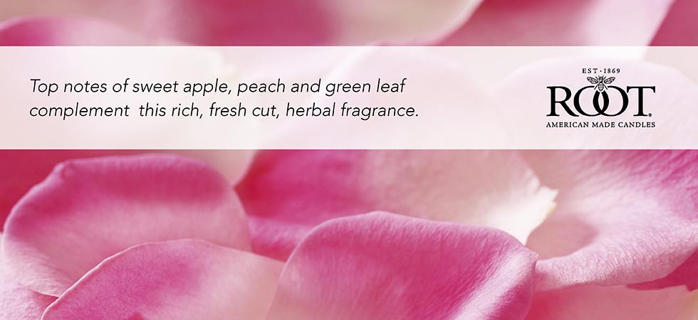 rose-petal.jpg