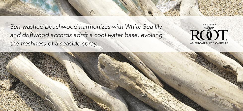 seaside-driftwood.jpg